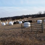 """round bales """"gridded up"""""""